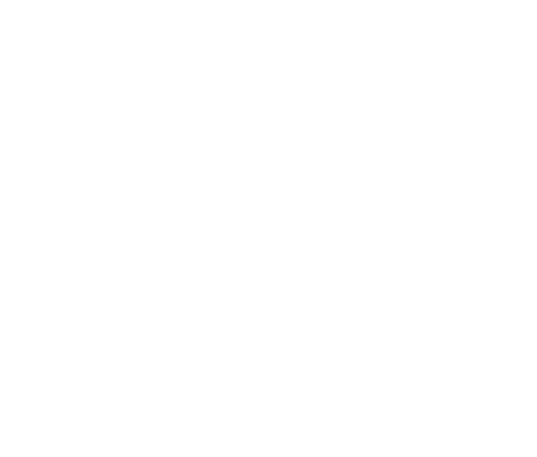 bahadir-yenisehirlioglu-logo